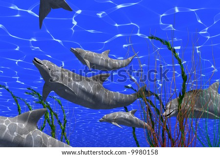 dolphins  femaly under water image with sunlight effect (3D render) - stock photo