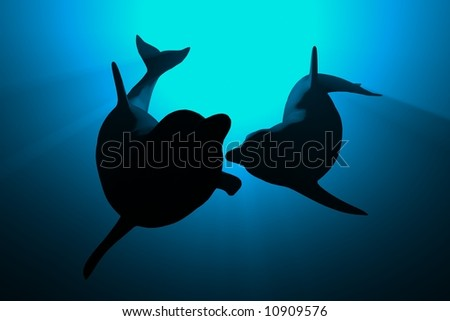dolphins love - stock photo