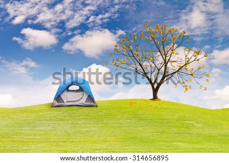 Dome tent camping on green grass field - stock photo