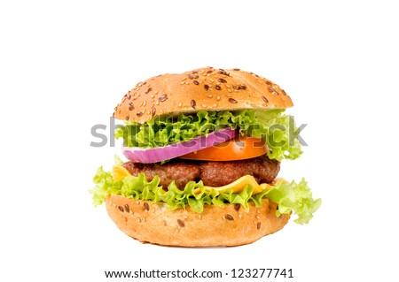 Domestic hamburger isolated on white background - stock photo
