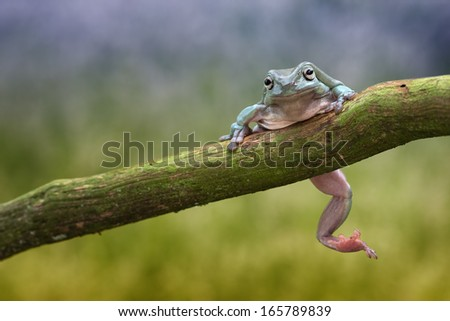 Don't worry... - stock photo
