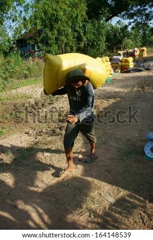 DONG THAP, VIET NAM- NOVEMBER 12: Paddy grain in rice sack & arrange in pile, porter carry rice sack in Dong Thap, Viet Nam, November 12, 2013