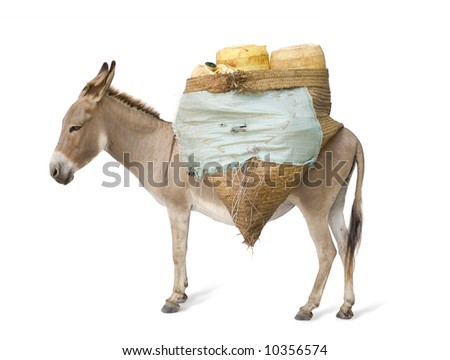 donkey carrying supplies in front of a white background