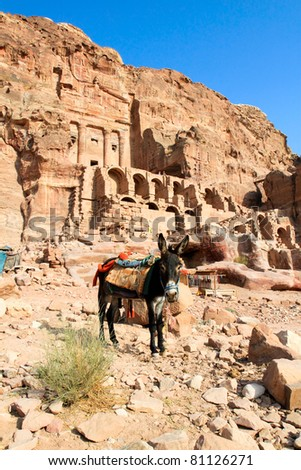 Donkey in front of Silk Tombs, Petra, Jordan - stock photo