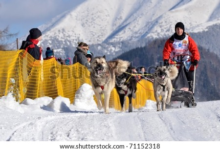 DONOVALY, SLOVAKIA - FEBRUARY 12: Blot Gwenaelle of France participating in the 10th World sleddog racing Championship F.I.S.T.C. February 12, 2011 in Donovaly, Slovakia - stock photo
