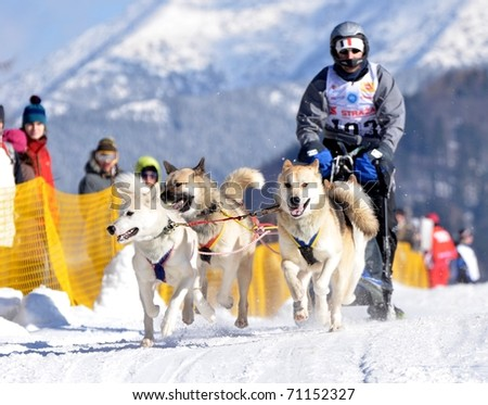 DONOVALY, SLOVAKIA - FEBRUARY 12: Blot Laurent of France participating in the 10th World sleddog racing Championship F.I.S.T.C. February 12, 2011 in Donovaly, Slovakia - stock photo