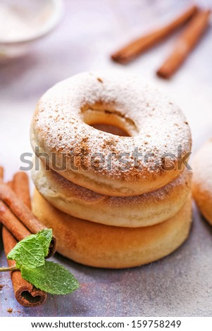 Donut with powdered sugar and cinnamon - stock photo
