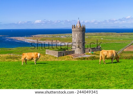 Doonagore castle with cow on the farm, Ireland - stock photo