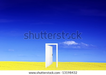Door to new world. Ready to use or edit - stock photo