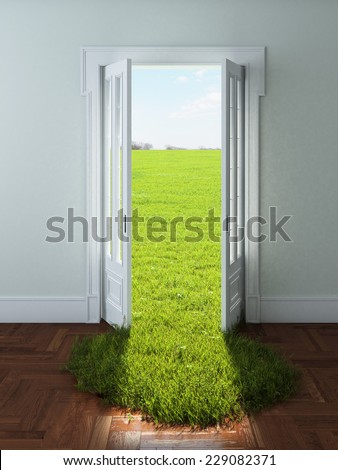 Door with bright green grass - stock photo