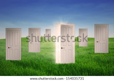 Doors to opportunity and an open door to success on the grass - stock photo