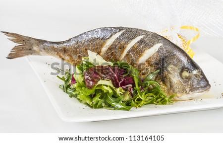 Dorada fish with salad on the white plate. Studio shot - stock photo