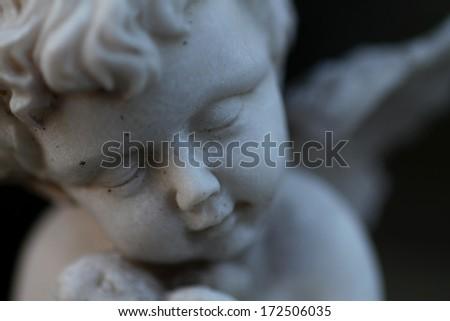 dormant angel - stock photo