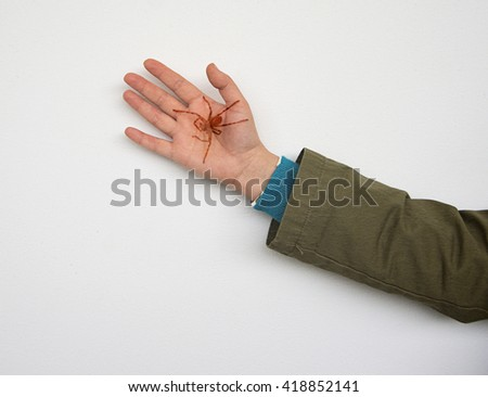 Double exposure of a spider on the hand of a woman, taken with the camera - stock photo