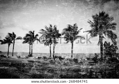 Double exposure of coconut tree on beach in Thailand for background,Black and white filter effects - stock photo