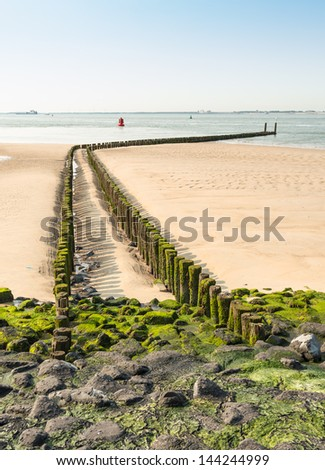 Double row of wooden poles covered with seaweed. - stock photo