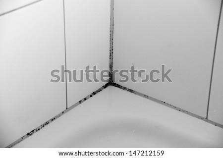 Douche, moldy - stock photo