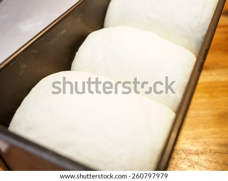dough in a baking pan - stock photo