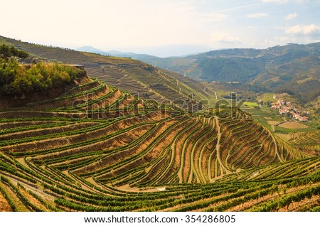 Douro Valley: Vineyards near Duero river and Pinhao, Portugal Europe - stock photo