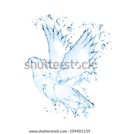dove made out of water splashes isolated on white - stock photo