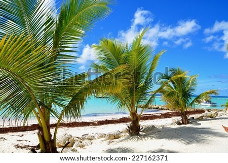 Dover Beach, on the south coast of the tropical Caribbean island of Barbados in the West Indies.