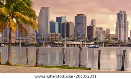 Downtown Miami Skyline and Brickell Financial District with two palm trees in a front at beautiful golden sunset. Miami, Florida, United States. - stock photo