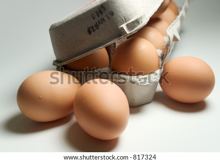 Dozen Brown Eggs - stock photo