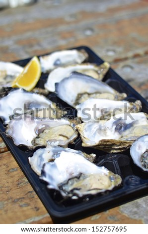 Dozen fresh oysters with lemon wedge at Kangaroo Island, Australia - stock photo