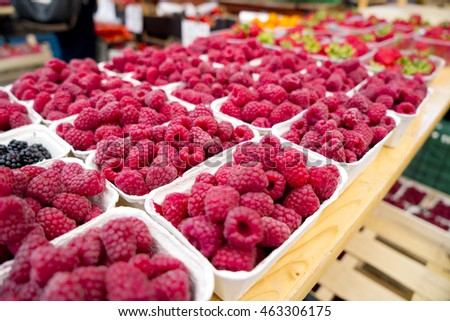 Dozens of Cartons of Organic Raspberries and Blackberries at a Farmers Market