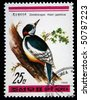 DPR KOREA - CIRCA 1988: A stamp printed in DPR Korea (North Korea) shows  Great spotted woodpecker - Dendrocopos major japonicus, circa 1988 - stock photo