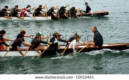 Dragon boat teams racing in Wellington Harbor, New Zealand - stock photo