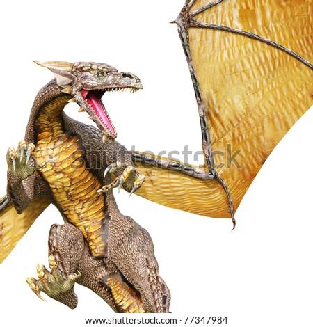 dragon close up - stock photo