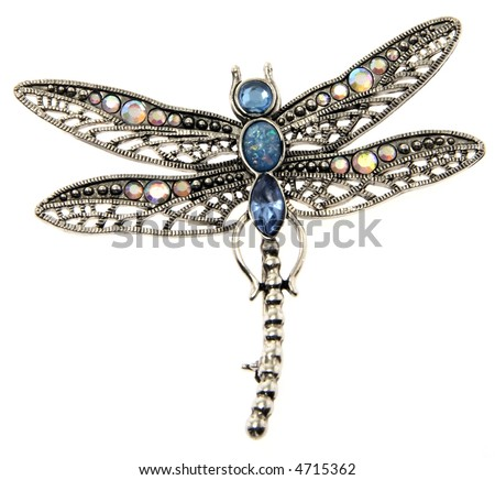 dragon-fly pendant jewelry isolated on white