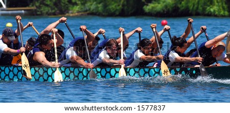 Dragonboat rowers in action. - stock photo