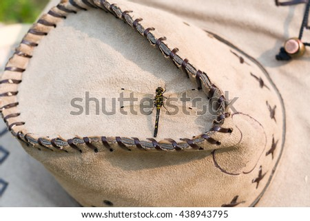 Dragonfly on a hat  - stock photo