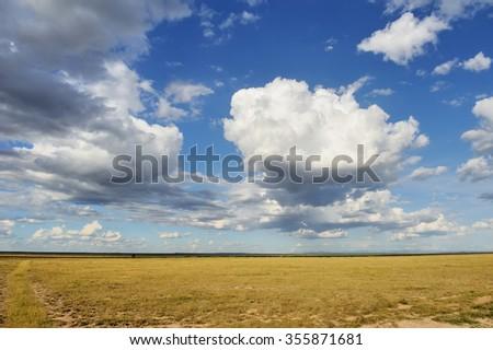 Dramatic cloud and the vast grassland of savannah - stock photo
