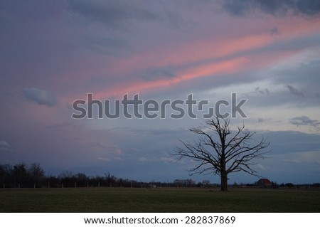 Dramatic clouds over a farmers tree - stock photo
