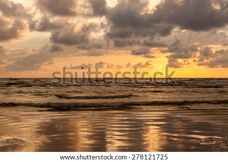 Dramatic cloudy sunset over Baltic sea coast in Liepaja, Latvia with flying seagulls in the windy sky. - stock photo