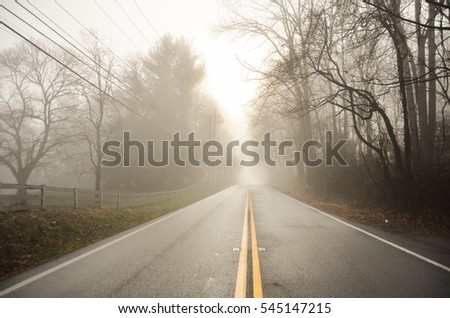 Dramatic foggy road into the winter forest