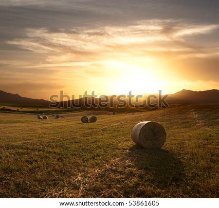 dramatic sky at the sunset over the harvest field of rolls of hay - stock photo