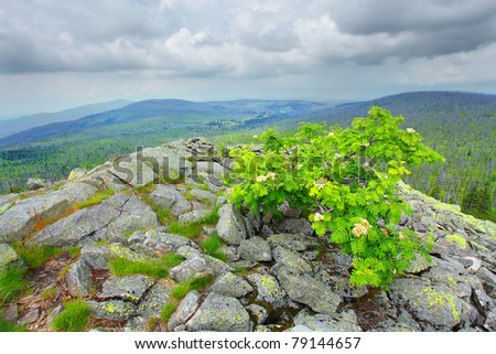 Dramatic sky over a Lusen peak (1373m) in national park Bavarian Forest. Germany, Europe. - stock photo