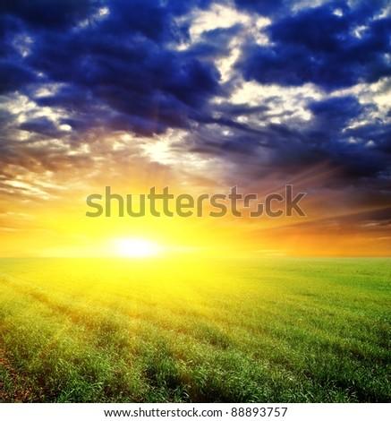 dramatic sunset among a green fields - stock photo