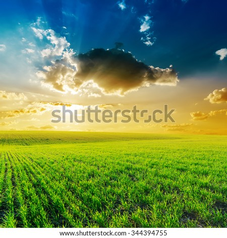 dramatic sunset in clouds over green field - stock photo