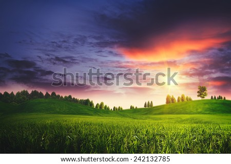 Dramatic sunset on the summer meadow, natural landscape - stock photo