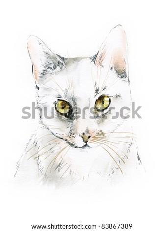 drawing cat portrait - stock photo