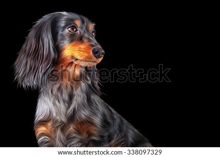 Drawing Dog breed dachshund portrait on a black background