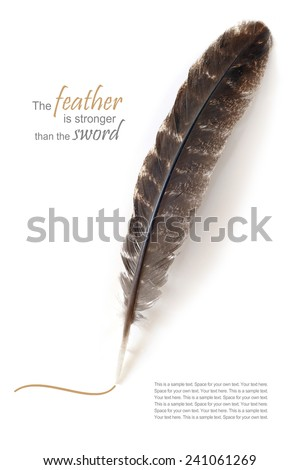 drawing feather isolated on white background, sample text metaphor, the feather is stronger than the sword - stock photo