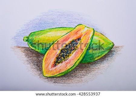 Drawing Fruit Colour Pencil Papaya Stock Illustration 428553937