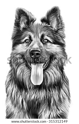Angry Wolf Head White Background Stock Illustration