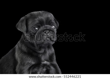 Drawing, illustration Puppy pug portrait oil painting on a black background